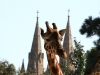 All the towers. Giraffe & Cathedral from Adelaide Zoo