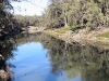 Darling River, Kinchega Ntl Pk, NSW