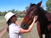 Even the horses were friendly – two simply walked up to us for some attention.  This fellow was especially affectionate.