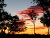 Sunset at Whitegum Bore campsite, our first night in Rudall River Ntl Pk