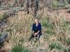 Nirbeeja among a field of native lemongrass