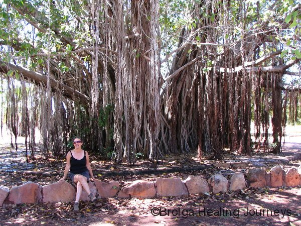 Nirbeeja relaxes under a huge Banyan Tree, Mataranka