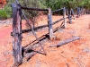 Old cattle-yard near Kathleen Spring, Watarrka Ntl Pk