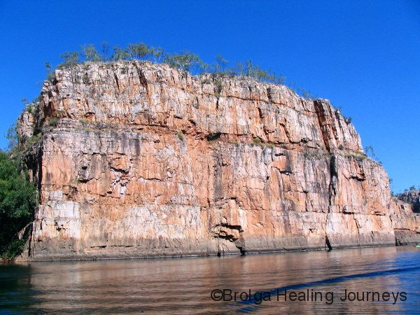 The famous Jeddah Rock, second gorge at Nitmiluk.  65 metres high.  Those are mature eucalypts on top.