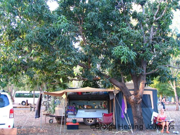 Nirbeeja relaxes beneath the mango tree at our shady campsite, Nilmiluk National Park