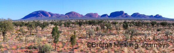 Kata Tjuta (The Olgas) across the Desert Oak plains