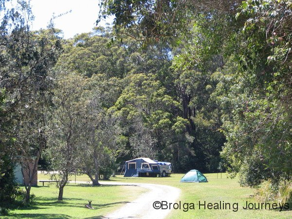 Campsite, Indian Head, Crowdy Bay Ntl Pk, NSW