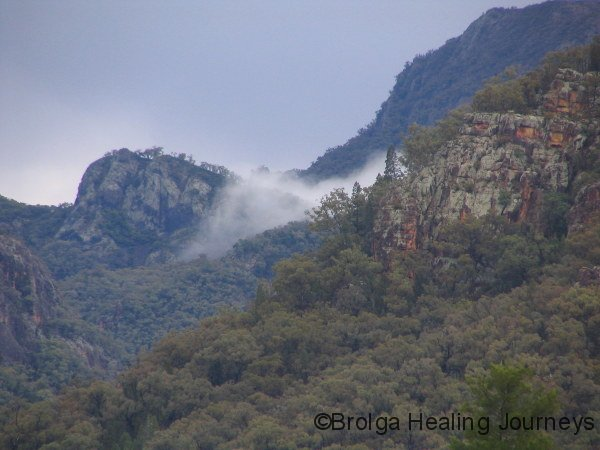 View from campsite, the mist clears after rain, Warrumbungle Ntl Pk