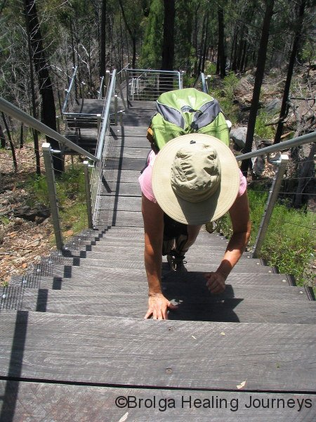 Nirbeeja with patented stair climbing technique