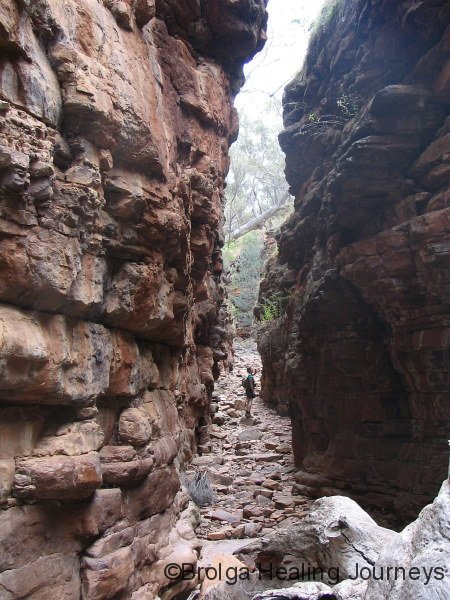 The Narrows - within Alligator Gorge, Mt Remarkable Ntl Pk