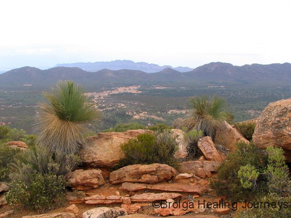 View across Wilpena Pound from summit of Mt Ohlssen Bagge