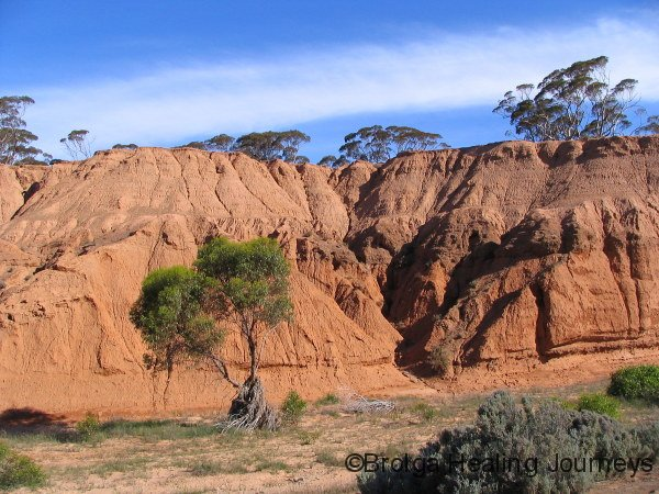 Erosion cliffs, Redbanks Conservation Reserve