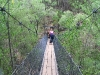 Nirbeeja on suspension bridge, Beedelup Falls, Beedelup Ntl Pk