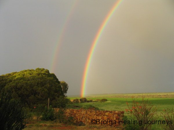 After early morning rain, at housesit north of Geraldton