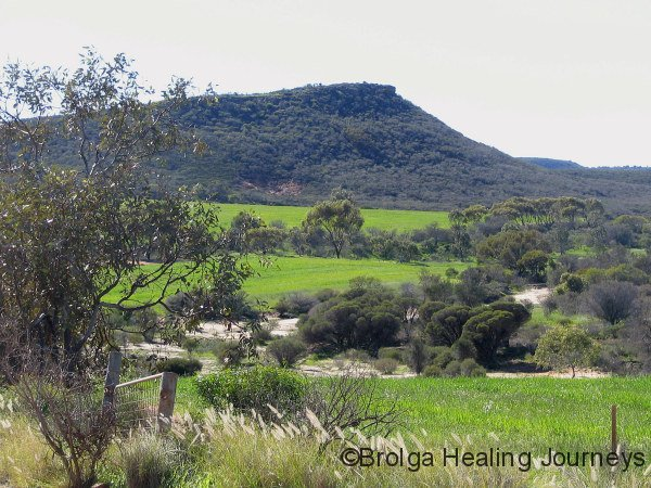 Local scenery at housesit north of Geraldton