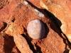 Rock in rock – conglomerate rock at Burringurrah