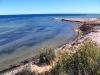 Sea-grass meadows (dark patches)  - Shark Bay