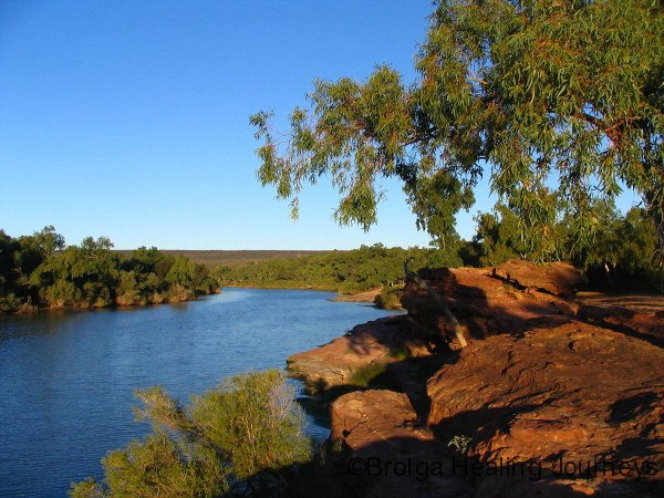 Murchison River late afternoon – near campsite