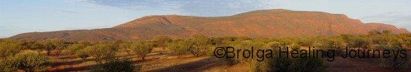 Burringurrah (Mt Augustus) at sunrise from campsite