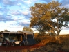Campsite at Savannah campground, Karijini Eco Retreat, with resident Snappy Gum