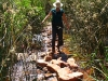Will she fall in?  Nirbeeja crosses stream during bushwalk to Crossing Pool