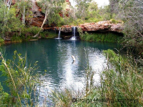 The beautiful Fern Pool