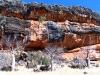 Guardian Boabs in front of a sacred Wandjina rock-art site, near Windjana Gorge, the Kimberley