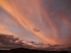 Buckaringa sunset