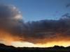 Rain falls like a golden veil over Buckaringa sanctuary