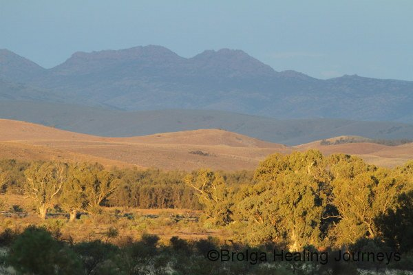 Late afternoon light to the north