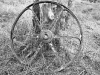 Old wheel near the ruins