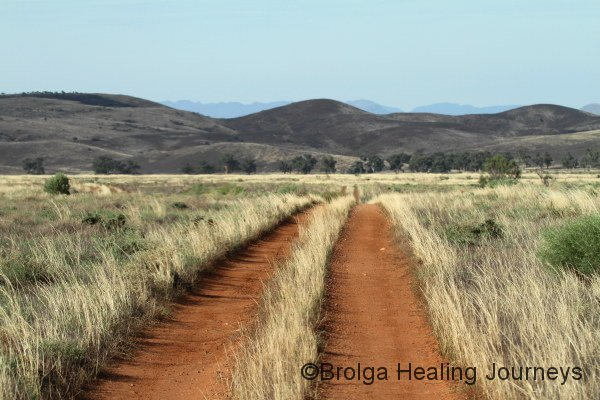Track on Buckaringa, late afternoon
