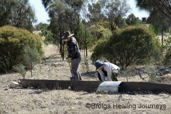 Felicity & Nirbeeja setting up a trap site