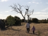 Nirbeeja and Maddy go to investigate a Wedge-Tail Eagle's nest near one of the trap-sites