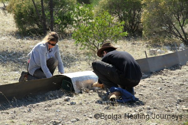 Volunteers Katja and Rob setting up funnel traps