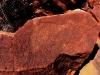 Emu petroglyph, Burrup Peninsula, WA