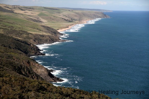 The view along the Fleurieu coast from Tapanappa Lookout, Deep Creek Conservation Reserve