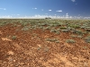The rig, gibber plain country, South Australia