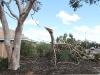 Woomera, storm damage