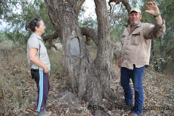 Mark explains the Blaze Tree to Nirbeeja.  The tree was marked in 1874-75 by the surveyor James Lewis, at a waterhole now named Blaze Tree.
