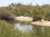 Travel a little further and look at what you find! Natural watercourse near Lake Mia Mia