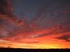 Kalamurina sunset