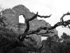 Old ruins, Weir's Cove, Flinders Chase Ntl Pk