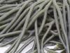 Seaweed, Vivonne Bay