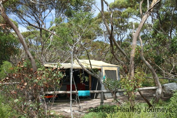 Our bush campsite