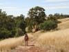 Nirbeeja explores the Melrose Nature Trail