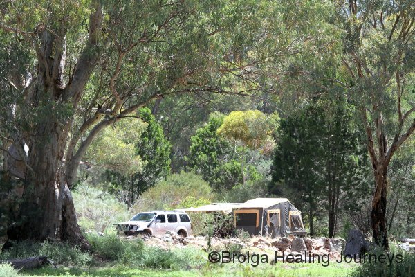 Campsite at Mt Remarkable