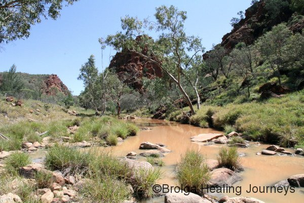 One of the lovely waterholes at N'Dhala Gorge