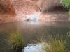 Mutitjulu waterhole, full to the brim after the overnight rain.