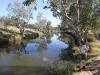 Nirbeeja enjoys the water views, Jay Creek, West MacDonnell Ranges